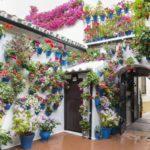 Conte Gen Contenedores en Córdoba Las Flores Zona Sur